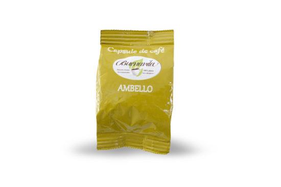 capsule café ambello