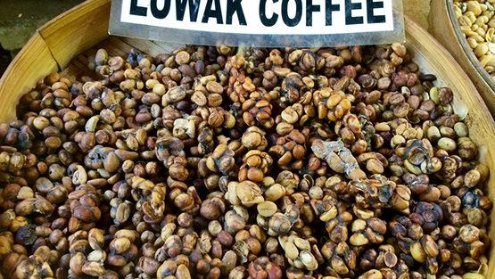 café plus cher monde