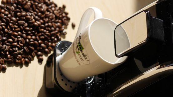 des boissons chaudes sans allergènes café cacao santé plaisir arôme saveur environnement buenavita